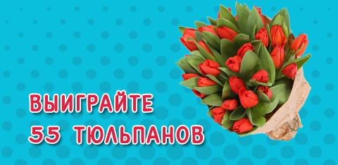 Выиграйте 55 тюльпанов